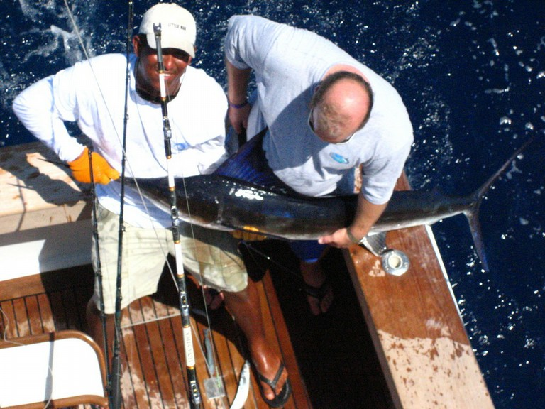 Marlin Fishing Costa Rica Pacific Coast - big