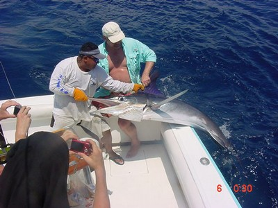 SPORT FISHING IN FLAMINGO - small
