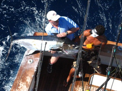 Sport Fish Catch with Costa Rica Fishing Charter based out of Flamingo - Guanacaste Costa Rica2 - small